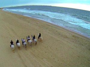 Paseos a caballo por la playa en el Puerto de Santa María y Algarve paseos a caballo por la playa en Jerez Cadiz Sanlucar y el Puerto